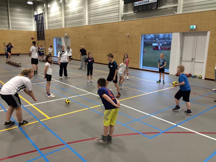 Sportwijzer Harderwijk Handbal